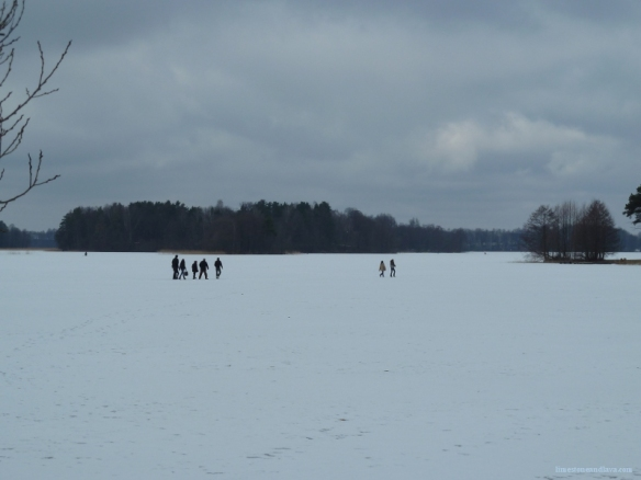 This isn't a field. This is a frozen and snow-covered lake.